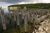 Old pier pilings, Fayette State Park by WPC_Greenspace_Gavin