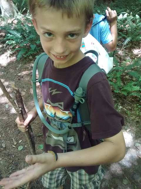 July 10 2015 Umstead Hike (10)