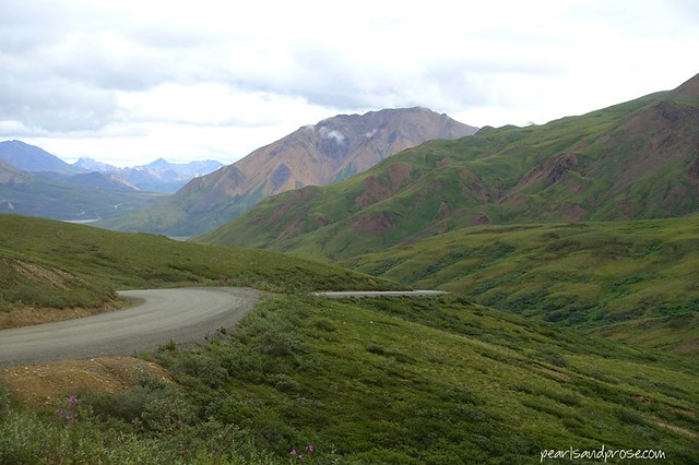denali_roads_web