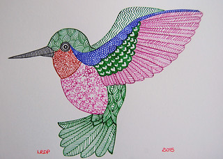 8 - Audubon - Hummingbird - Ink - Laura