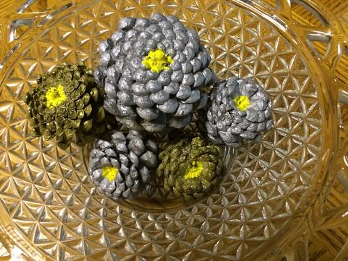 Five Fir Fruit (pine cones) Flowers