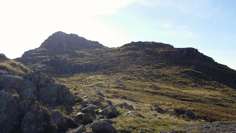 Harrison Stickle #sh