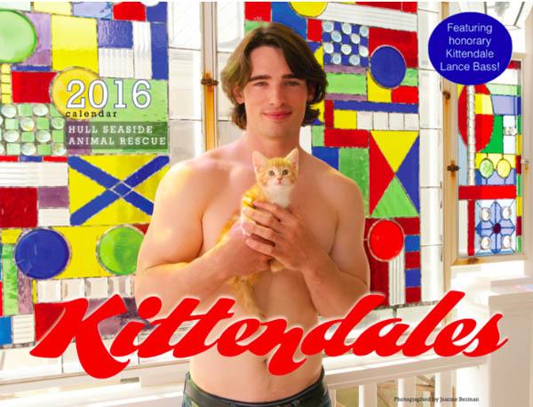 kittendales-11-22-15
