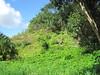 Hilltop above Kawa'ewa'e