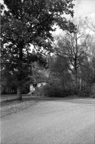 blackandwhite bw film monochrome analog asahi pentax takumar sweden outdoor 28mm d76 spotmatic sverige smc ilford fp4 f35 ilfordfp4 filmphotography jobo 125iso spotmaticf autolab smctakumar homeprocessing filmforever atl1500 älekulla larsholte