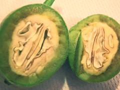 #Internal #nut #unripe