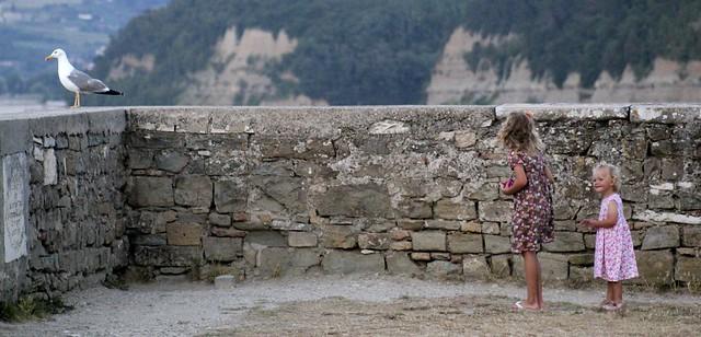 Třináct tisíc dní - z tvorby: Piran '2013-15
