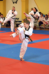 2016-06-11 (73) Dragon Yong-In black belt testing - Purcellville
