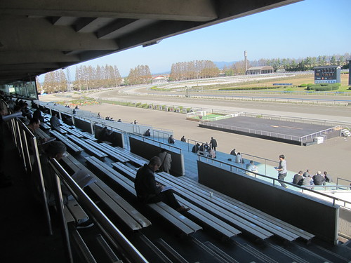 金沢競馬場の屋外席