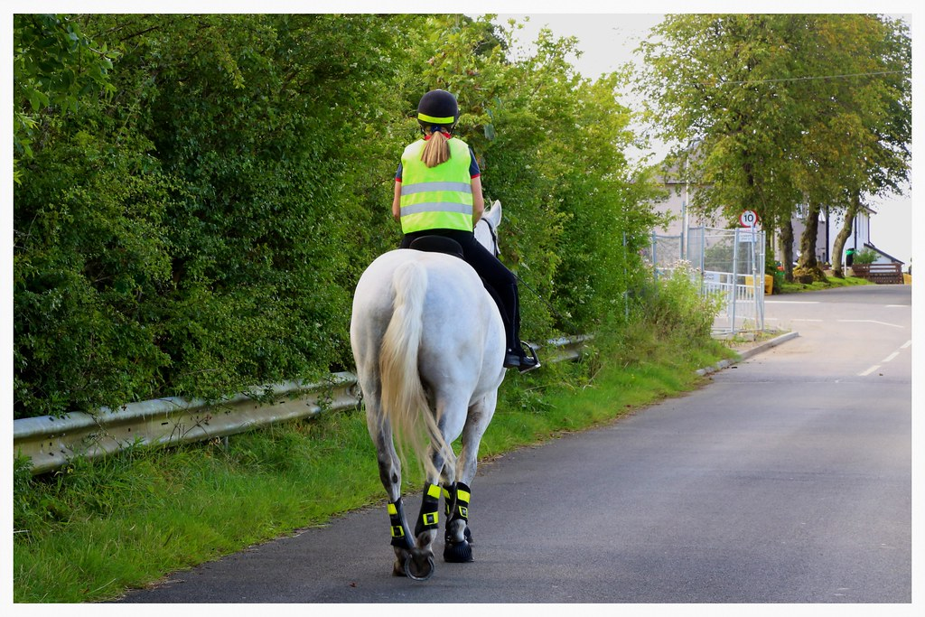 Fauldhead  | I suppose hitching posts will now be supplied i