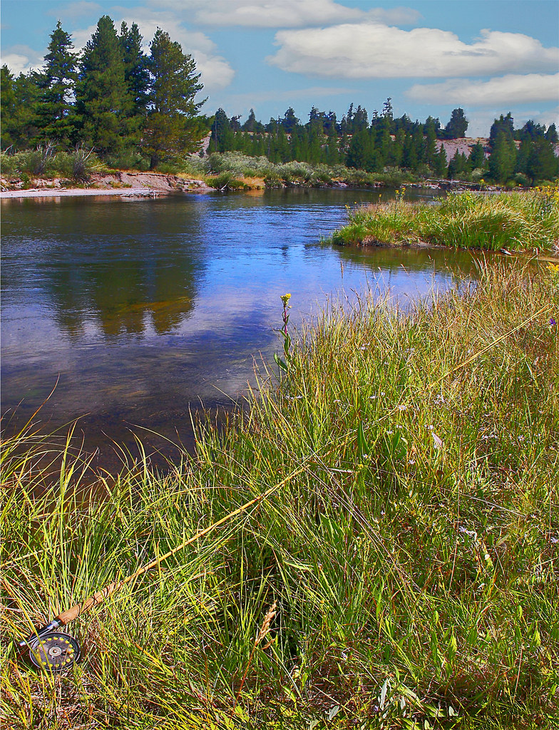Fly fishing in yellowstone national park upcoming for Yellowstone national park fishing