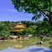 Golden Kinkaku-ji Sun