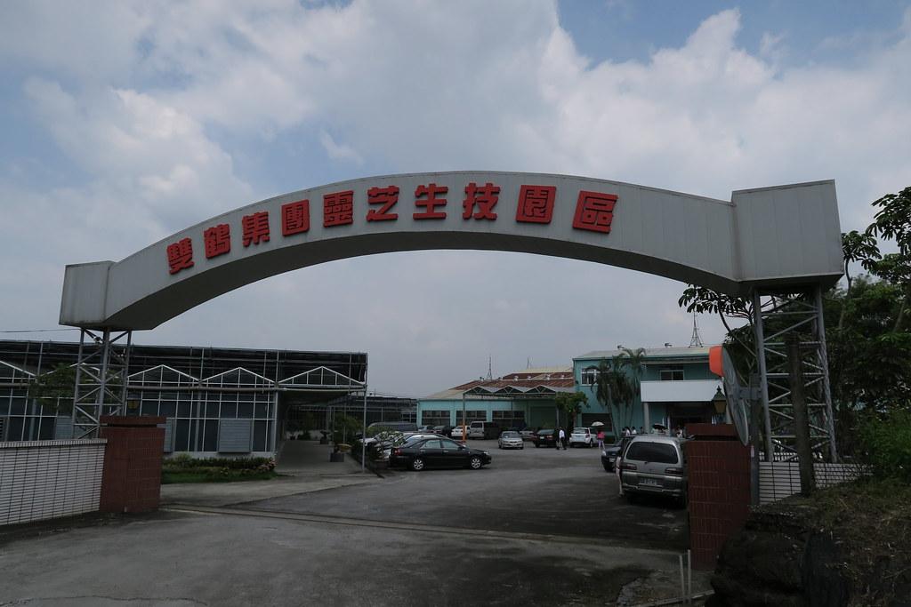 台南市白河區雙鶴靈芝農場 (1)