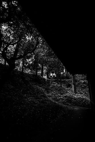 IMG_3107_LR__Kyoto_2015_09_04