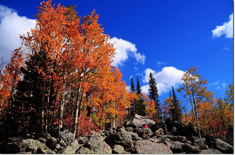 2015 Rockies in Fall, Bear Lake Area (27)