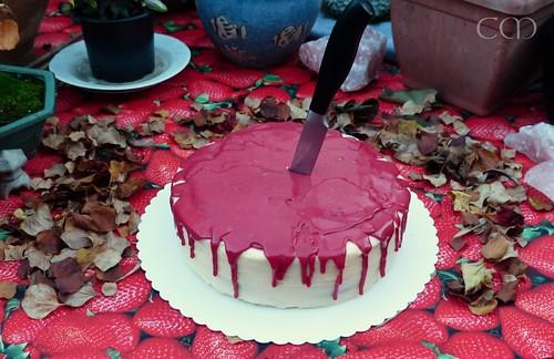 Halloween-Kuchen :)