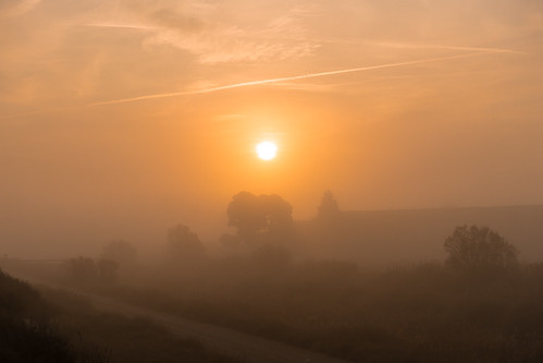 Niebla en Monegros