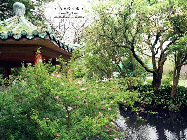 陽明山一日遊景點推薦前山公園 (8)