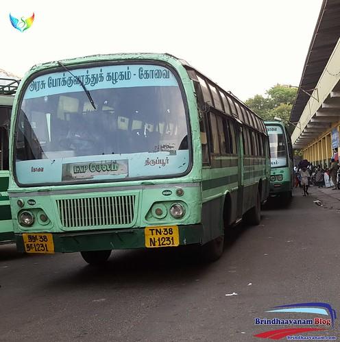 TN 38 N 1231