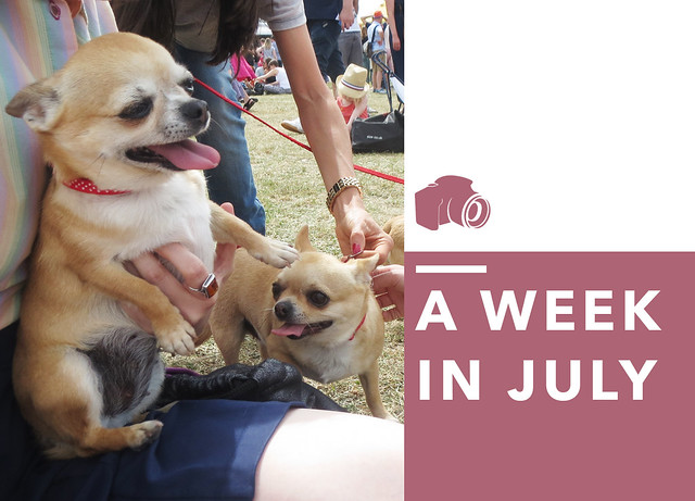 A Week in July
