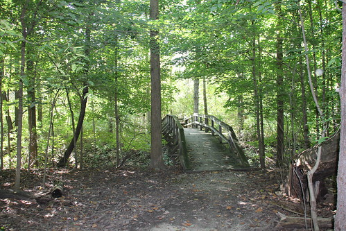 IMG_6193_Footbridge_on_Trail_5