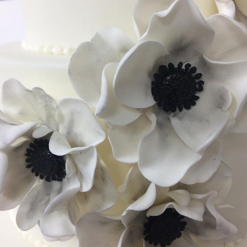 Monochrome Sugar Flowers Anemone Sugarflower Blackandwhite