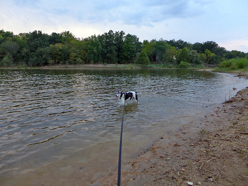 2015-09-23 - Walking at Smithville Lake - 0097 [flickr]
