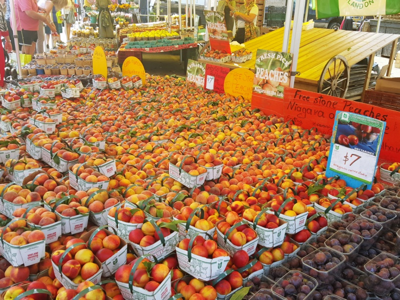 St Jacobs summer market peaches