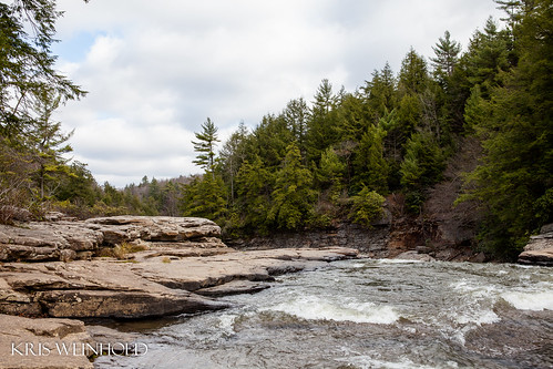 Top of Swallow Falls