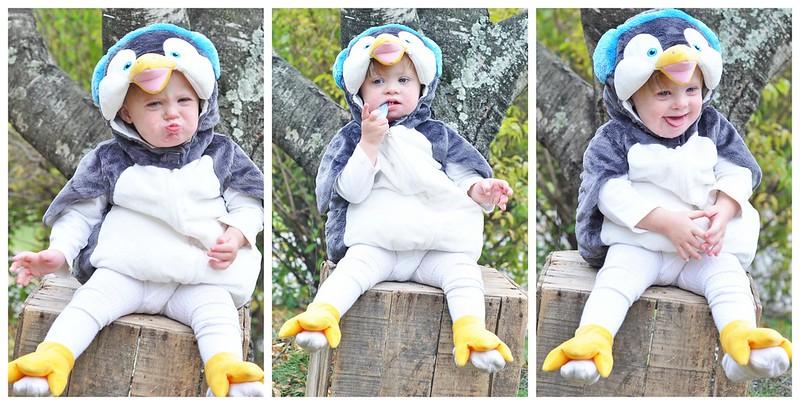 Penguin Liam