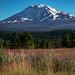 Mt Adams by ♞Jenny♞