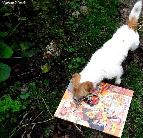 Helwen la petite chienne, l'écureui & le calendrier de l'avent