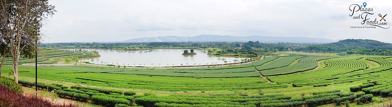 singha park panoramic view