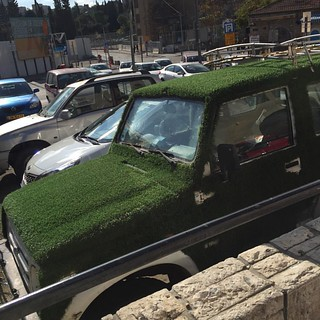 Травка зеленеет.