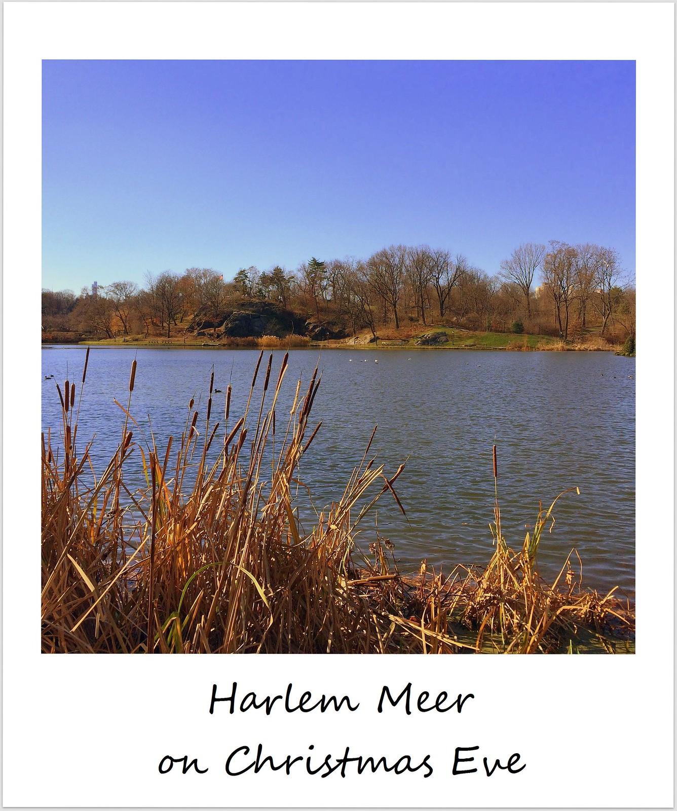 polaroid usa new york city central park harlem meer