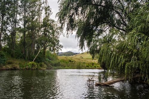 Barrington River at Relfs Road