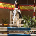 Show Jumping - June 19 2016