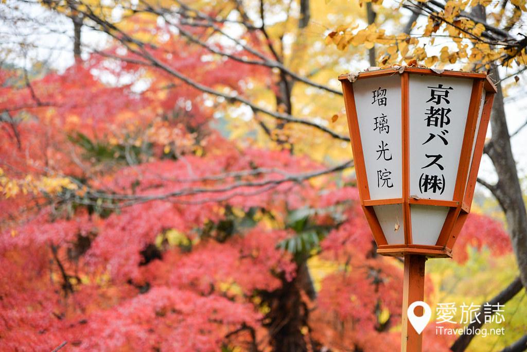 京都賞楓景點 琉璃光院 20