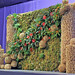 Plant Wall by Jenny Thomasson, AIFD, Photo by Molly Baldwin, American Institute of Floral Designers