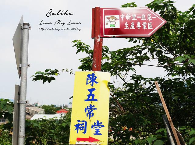 桃園一日遊旅遊景點中新里韭菜花