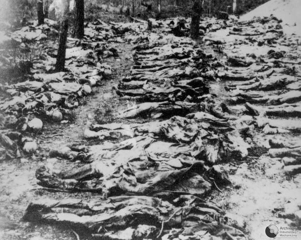 Exhumation of mass grave of polish officers killed by NKVD in Katyń Forest