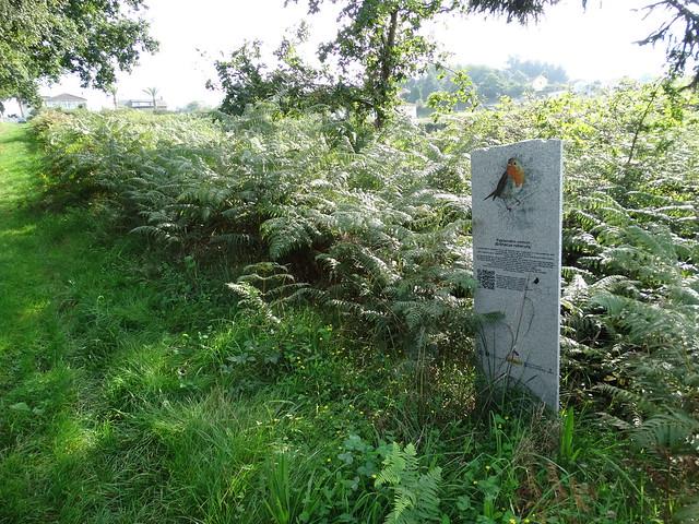 Hito Piedra en la Ruta Ornitológica del Bosque Animado