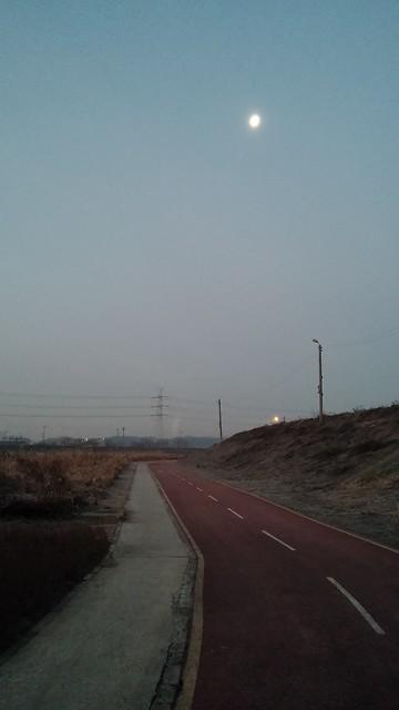 공릉천 관찰일기-아침달