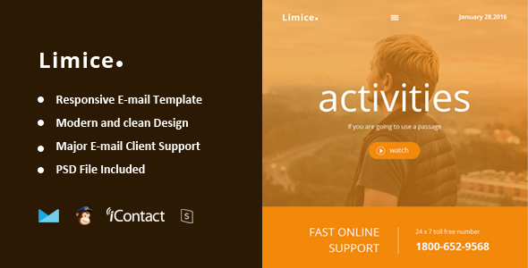 Limice v1.0.0 – Responsive E-mail Template + Online Access
