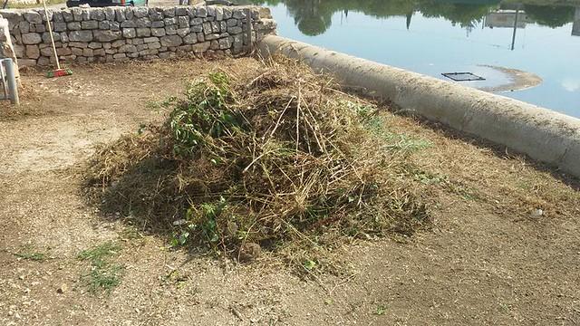 Conversano- cittadini ripuliscono il lago di Sassano 10