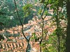 Brasov, from above by blue_ann13
