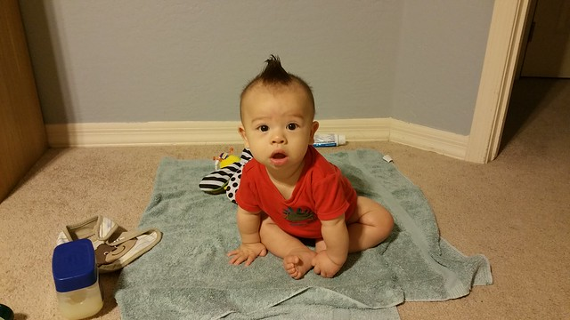 Parker at 7 Months Old | shirley shirley bo birley Blog