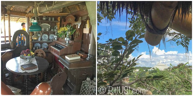 Study in Swiss Family Robinson's Treehouse attraction, and view of Space Mountain in Disney's Magic Kingdom