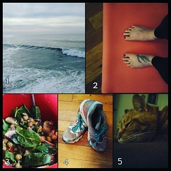 For #decemberreflections #day8 #5thingsaboutme 1) I live and work by the ocean. 2) I try to do yoga every day. 3) I don't eat meat. 4) I like to run. 5) I love my pets.