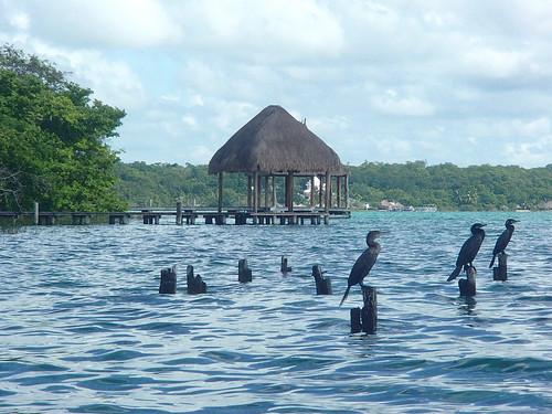 Kayak Adventure  - Laguna Bacalar 1
